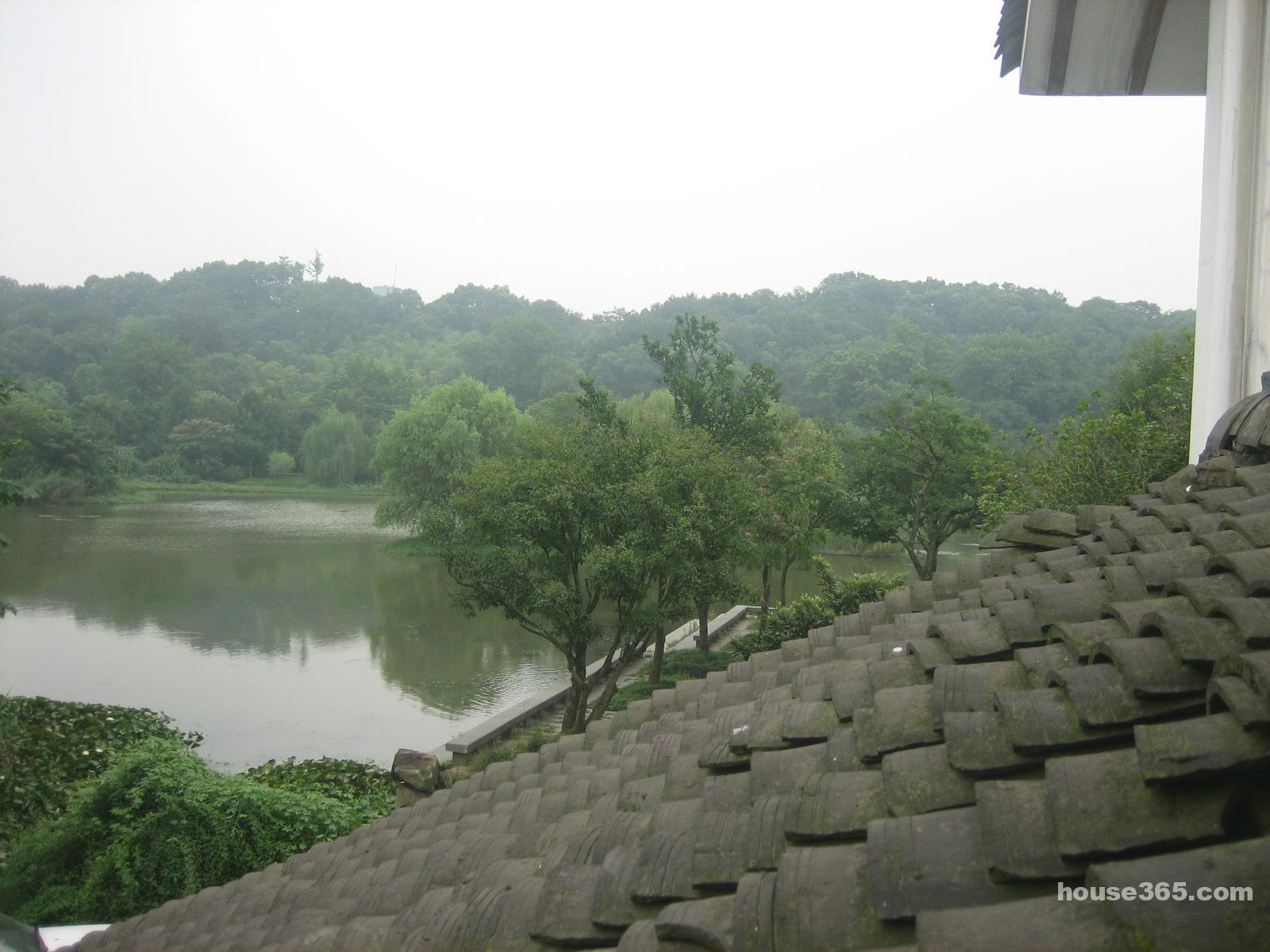 杭州市西湖区龙井路