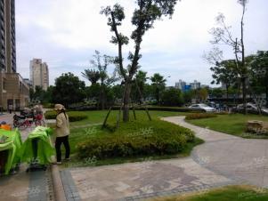 滨江金色蓝庭实景图
