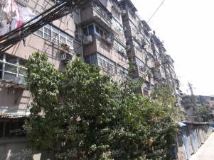 连家店南堡新寓3室1厅1卫76平方产权房精装