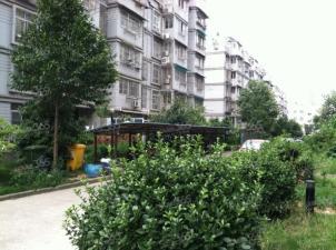 壹城花园实景图