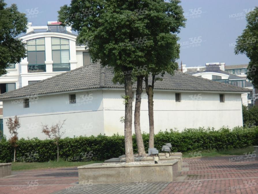 【丽岛别墅户型图_苏州丽岛别墅实景图】_苏州二手房