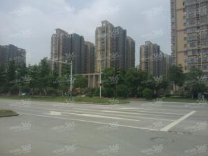 仙林东 宝华大道 泰达青筑紫燕百味鸡店 随时可以看房