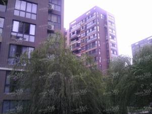 大溪地现代城,合肥大溪地现代城二手房租房