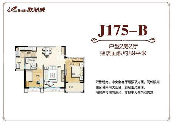 碧桂园欧洲城89平米J175-B户型图