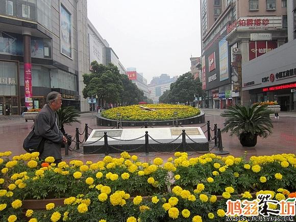芜湖市第十二中学风景